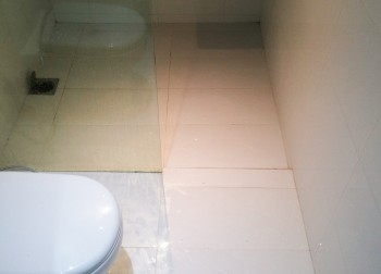Common Bathroom (Landed – Lorong Ong Lye)