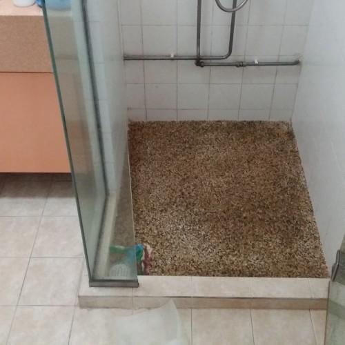 Master Bathroom - HDB Pasir Ris Drive 1 -1
