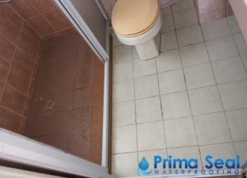 Common Bathroom Waterproofing Singapore (Condo – Jalan Rajawali)