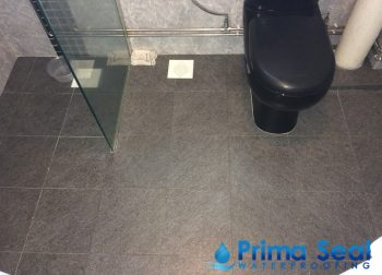 Common Bathroom Waterproofing Singapore (HDB – Pasir Ris St 13)