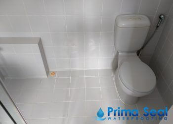 Common Bathroom Waterproofing Singapore (Landed – Watten Rise)