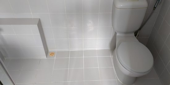 Common-bathroom-waterproofing-singapore-landed-watten-rise-7