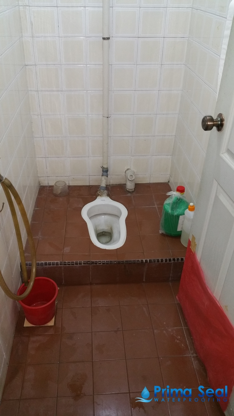 Common Bathroom Waterproofing Singapore (Apartment - Nadia ...