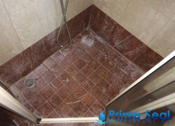Common Bathroom Waterproofing Singapore (Condo- Hindhede Walk)