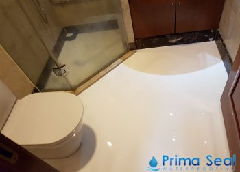 Common Bathroom Waterproofing Singapore- (Condo- Balmoral Crescent)
