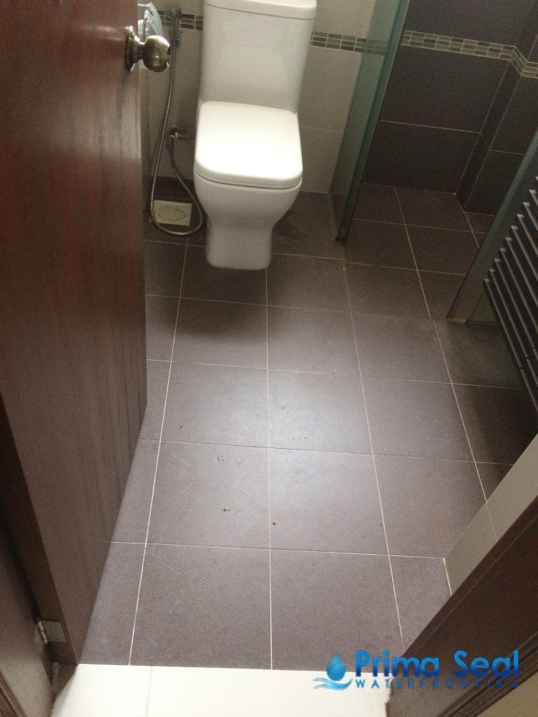 Common bathroom waterproofing flood infusion treatment