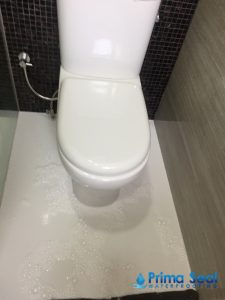 Toilet-Leakage-Prima-Seal-Waterproofing-Singapore_wm