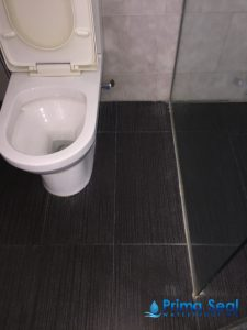Water-leaking-Prima-Seal-Waterproofing-Singapore_wm