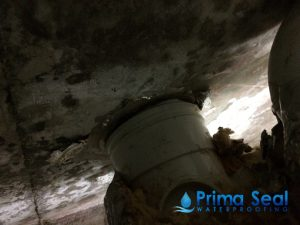 water-leakage-primaseal-waterproofing-singapore_wm