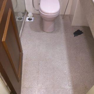 Common-Bathroom-Waterproofing-Flood-Infusion-Treatment-Singapore-Condo-Hillview-3_wm