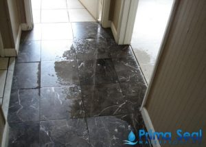 Puddle-of-water-at-home_wm