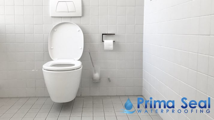 How Much Does Toilet Hacking and Waterproofing Cost?