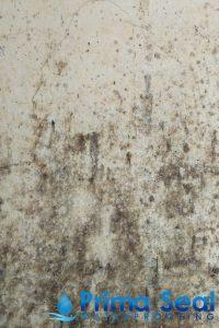 molds-toilet-hacking-signs-toilet-waterproofing-primaseal-waterproofing-singapore