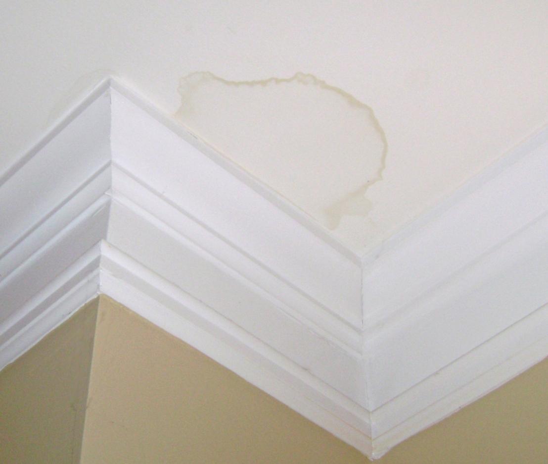Ceiling Leak Waterproofing Prima Seal