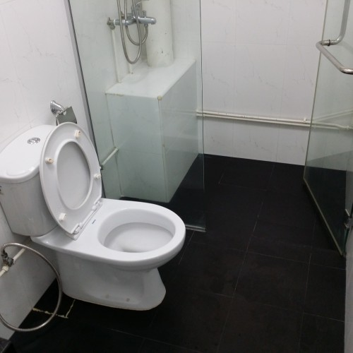 Common Bathroom - HDB Tampines Ave 5 -1