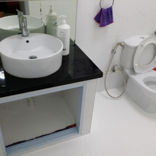 Common Bathroom - HDB Tampines Ave 5 -4