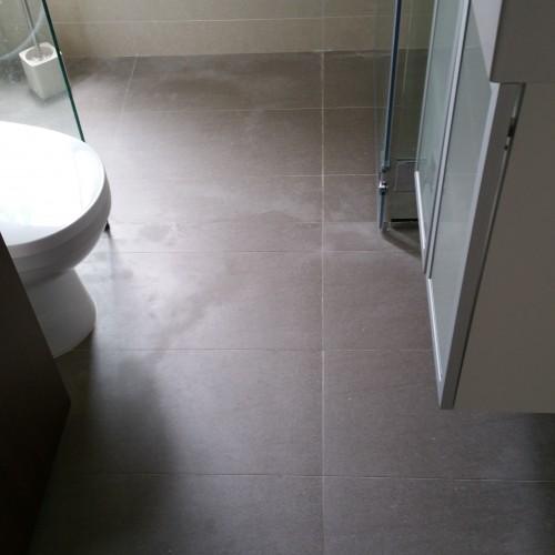 Common bathroom Pandan Valley Singapore waterproofing 4