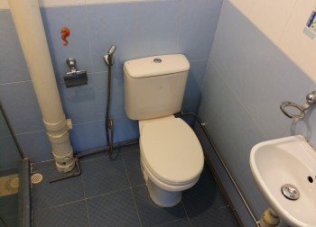 Master Bathroom (HDB – Bedok North Ave 2)