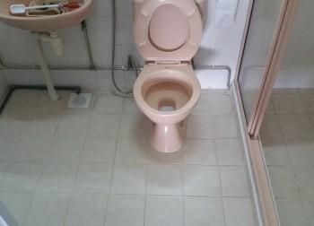 Master Bathroom (HDB – Compassvale Walk)