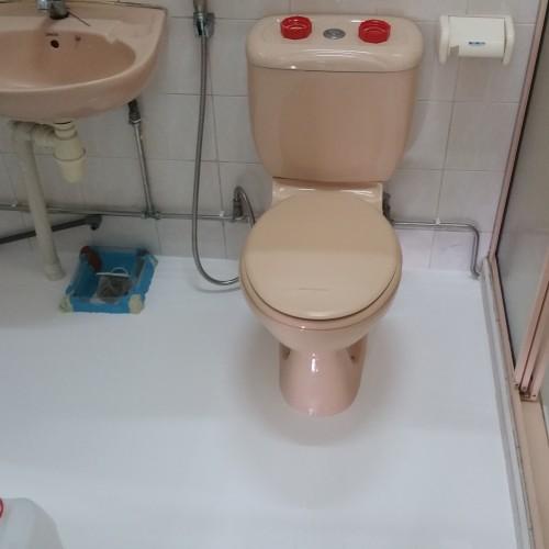 master bathroom HDB Compassvale Walk waterproofing 2