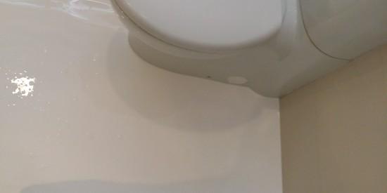 Master-Bathroom-waterproofing-Landed-Coronation-Drive-4
