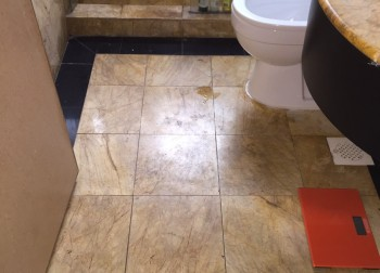 Common Toilet Waterproofing Singapore (Condo – Oleanas Residences, Kim Yam Road)