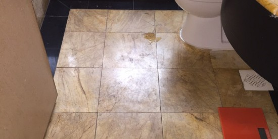 Common-bathroom-waterproofing-Singapore-Condo-Kim-yan-road-1_wm_wm