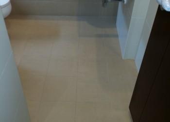 Common Bathroom Waterproofing Singapore (Landed – Heng Mui Keng Terrace)