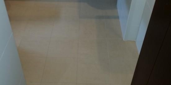 Common-bathroom-waterproofing-singapore-landed-Heng-Mui-keng-terrace-1