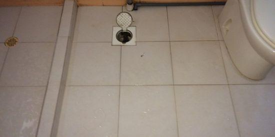 Common-bathroom-waterproofing-singapore-hdb-tampines-st-11-1