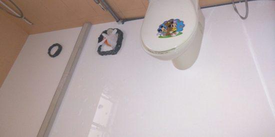 Common-bathroom-waterproofing-singapore-hdb-tampines-st-11-4