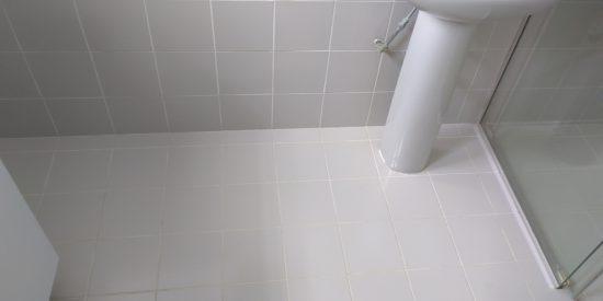 Common-bathroom-waterproofing-singapore-landed-watten-rise-2