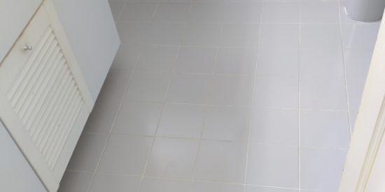 Common-bathroom-waterproofing-singapore-landed-watten-rise-3