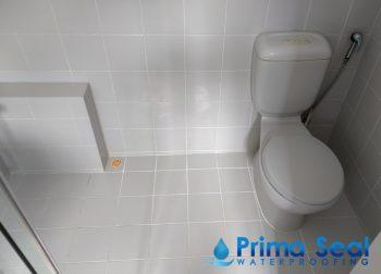 Common Bathroom Waterproofing Singapore (Landed – Watten Rise)