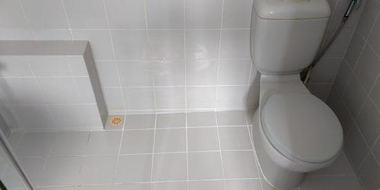 Common-bathroom-waterproofing-singapore-landed-watten-rise-7