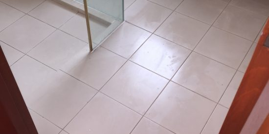 Common-bathroom-singapore-flood-infusion-treatment-Landed-Chuan-Drive-Serangoon-Garden-2_wm