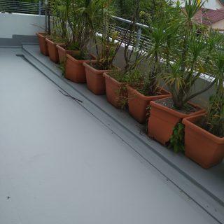 5 Layers Acrylic Waterproofing Membrane Fibreglass reinforced balcony waterproofing singapore landed bukit timah 7